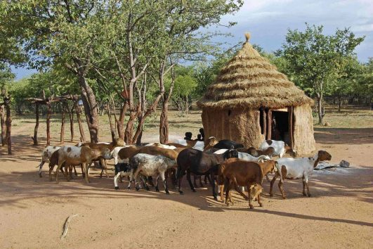 Southern Africa Mature travelers affordable escorted small group tours