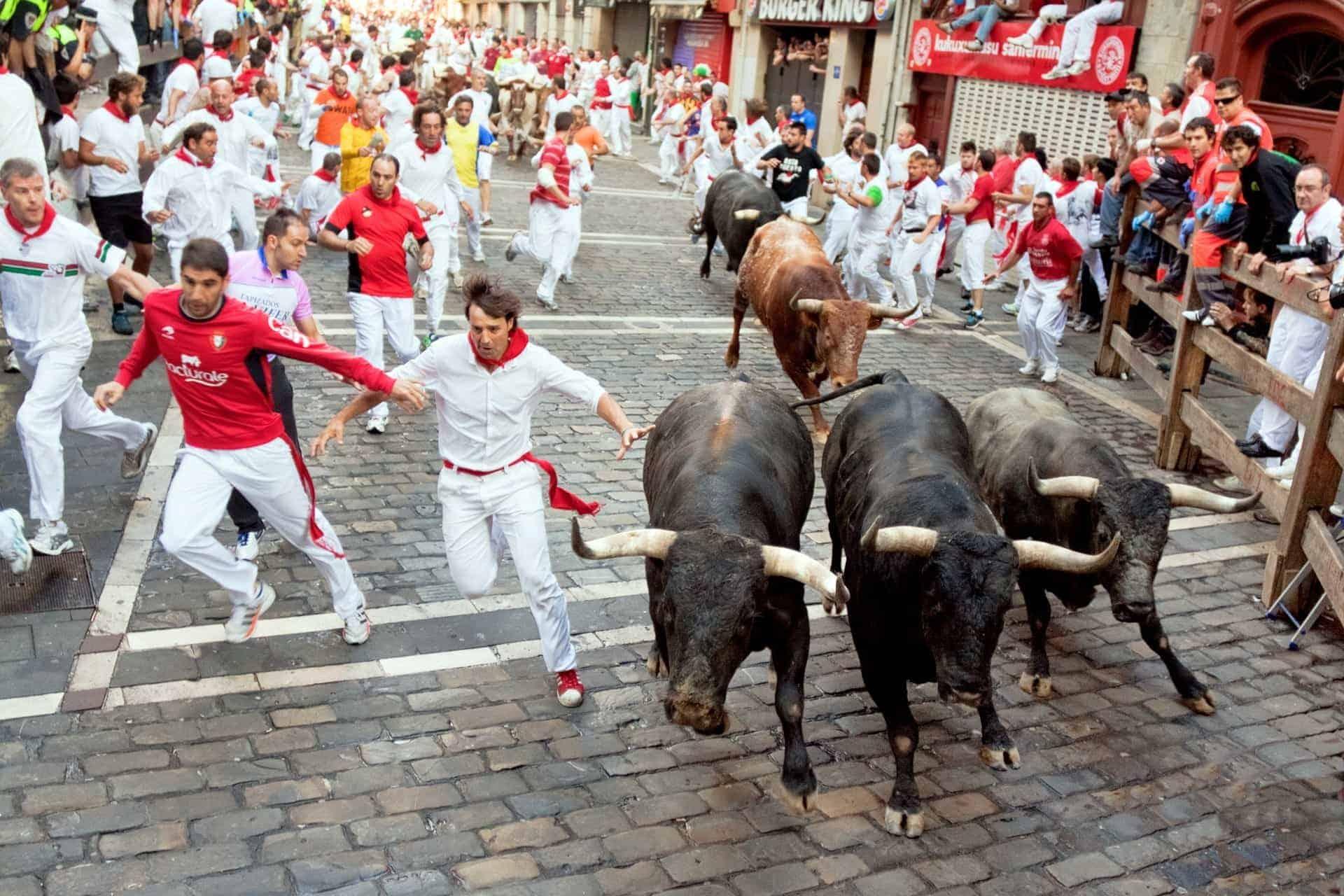 Pamplona Spain bulls