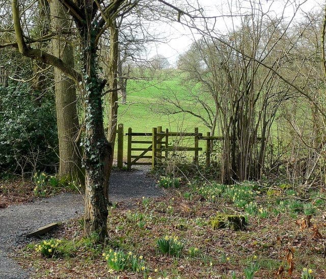 Walks of England