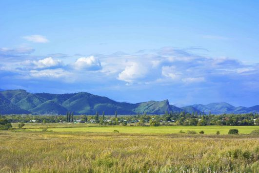 Trans-Siberian Landscapes and Wildlife