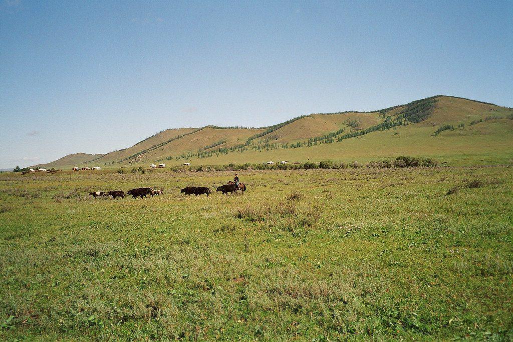 Rural Mongolia