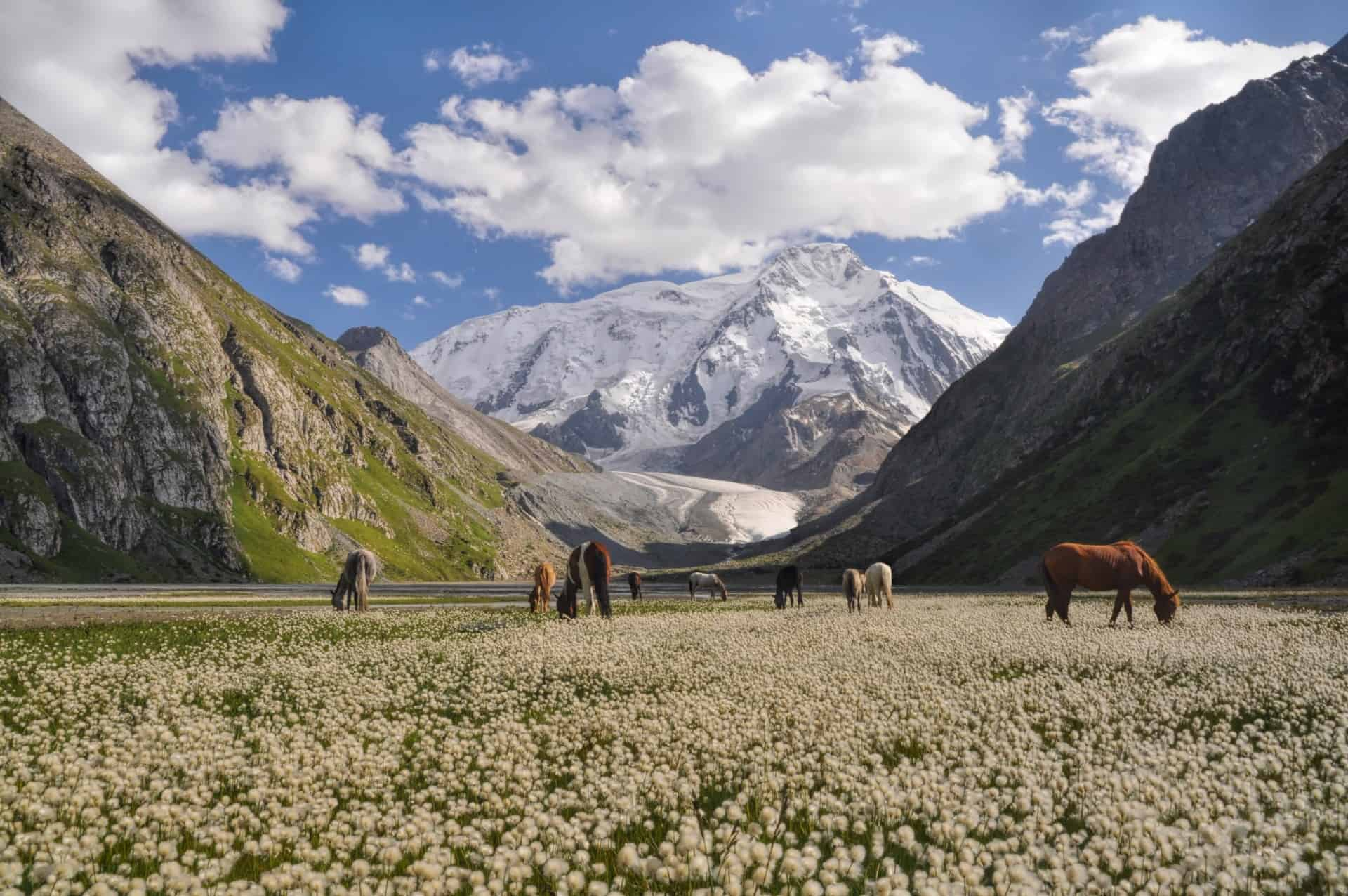 Kyrygzstan