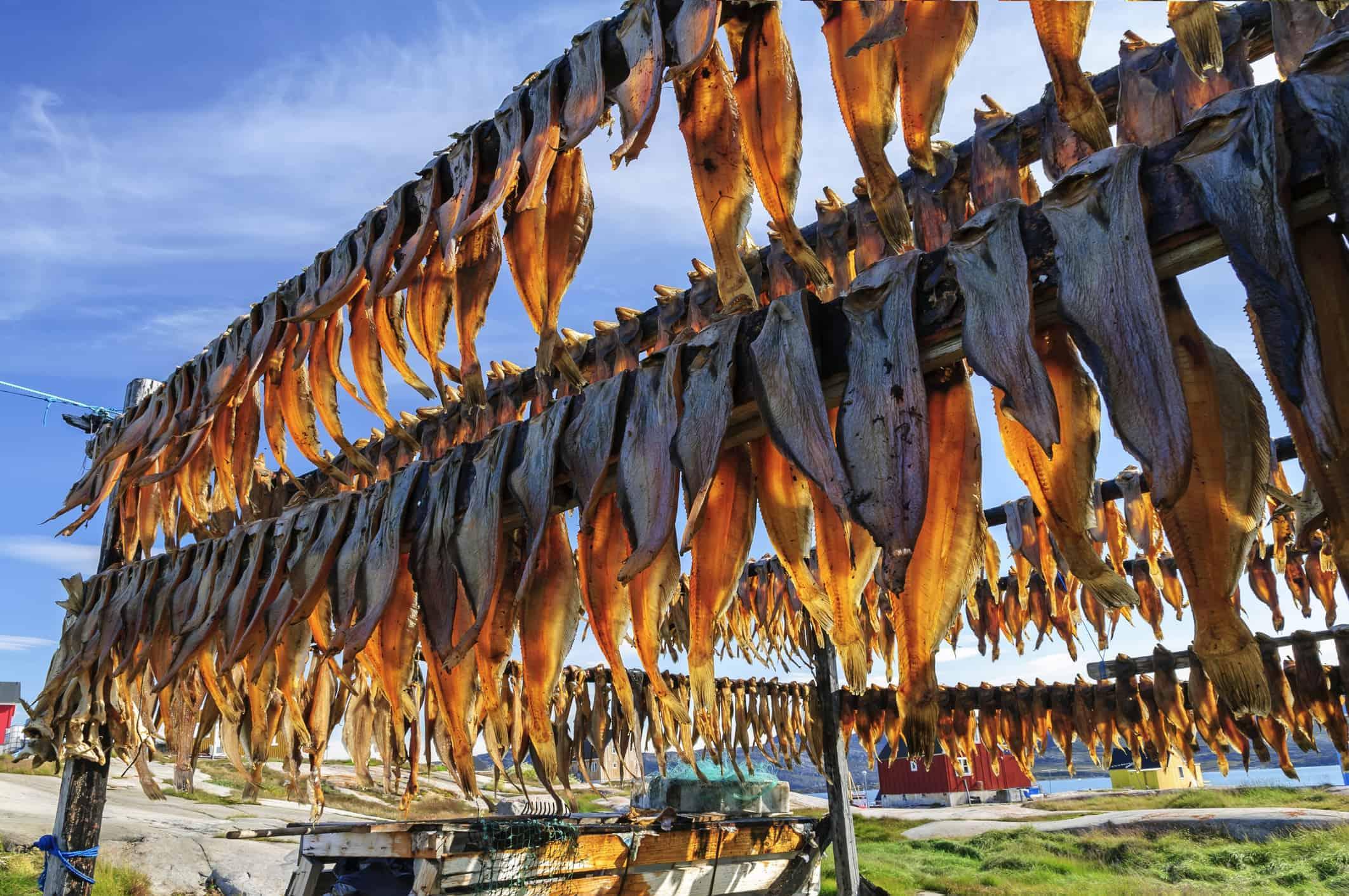Greenland dried fish
