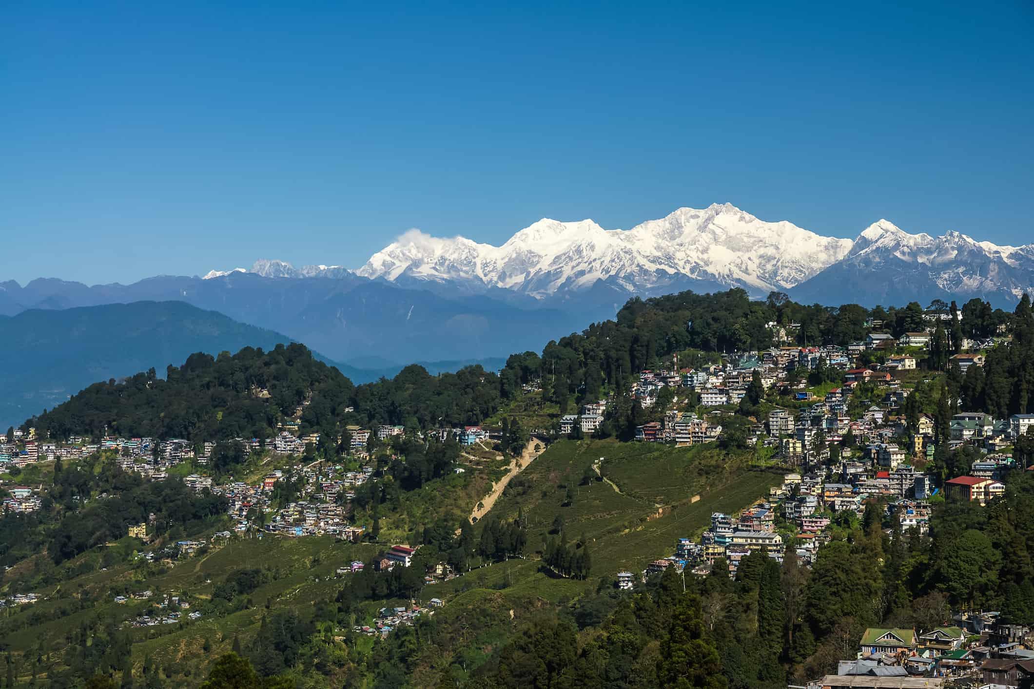 Darjeeling Town and Tea Plantation with Himalaya Mountains