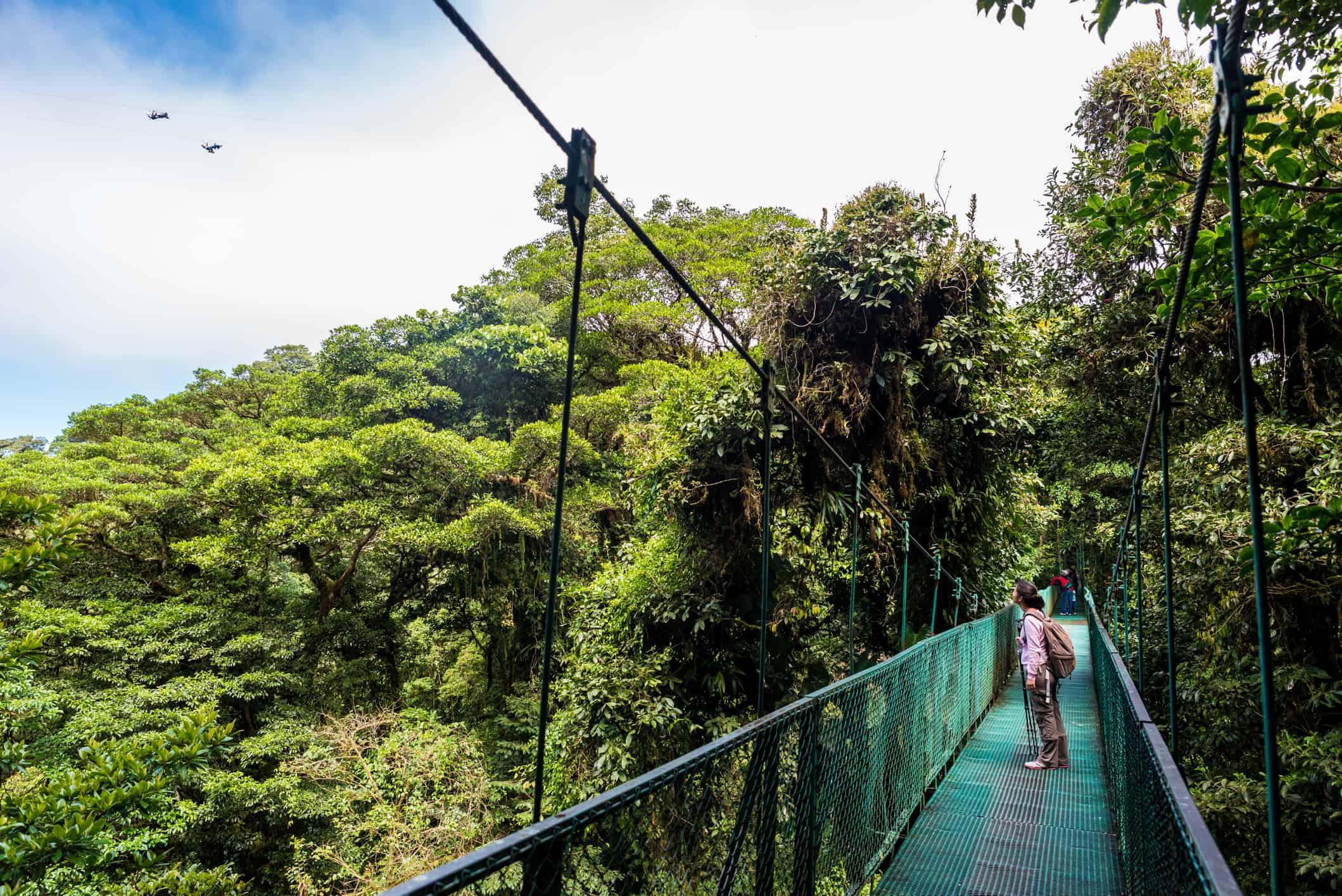 Girl walking on hanging bridge in Cloud Forest - Monteverde, Costa Rica