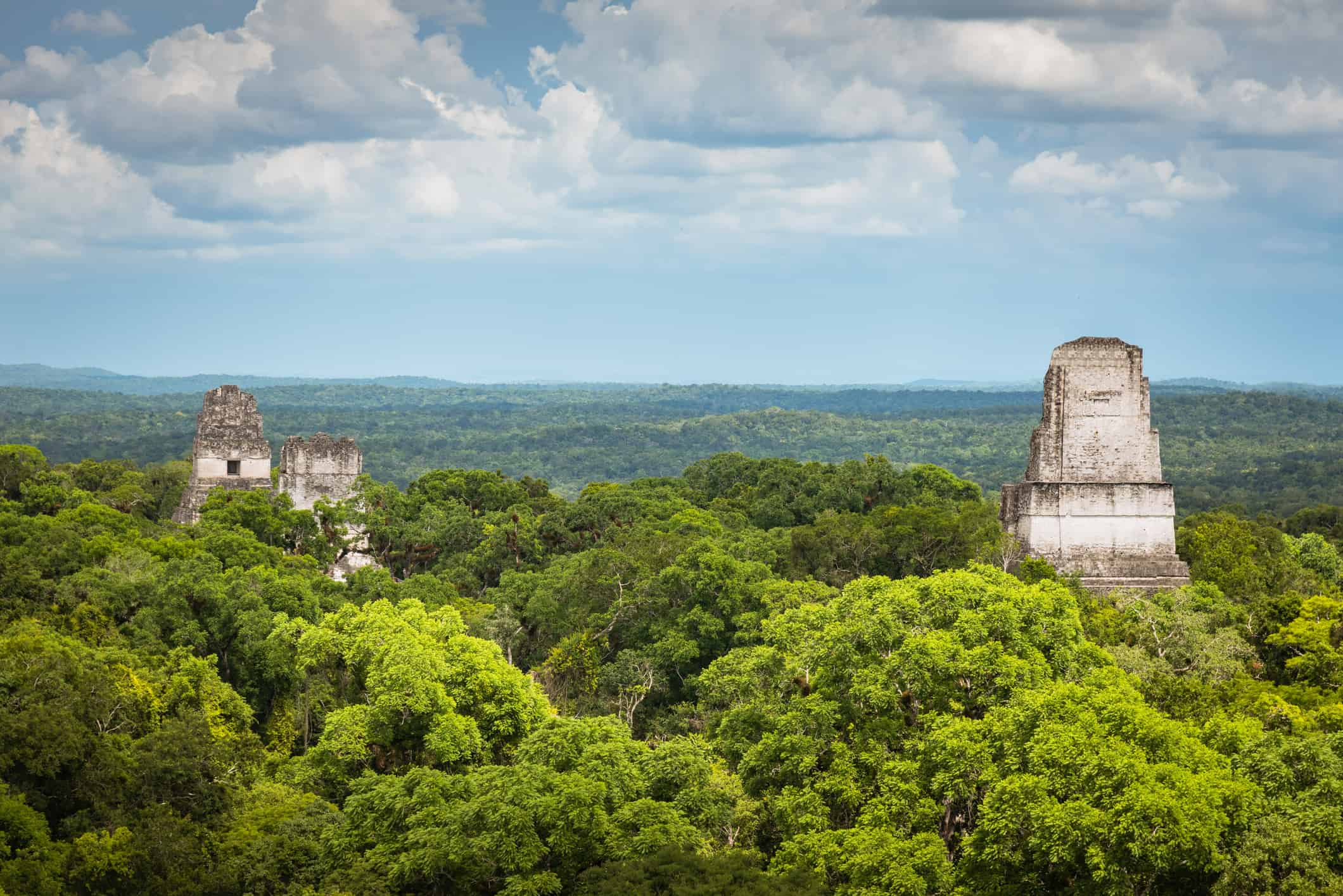 View of the Tikal temples rising above the forest canopy, Guatemala