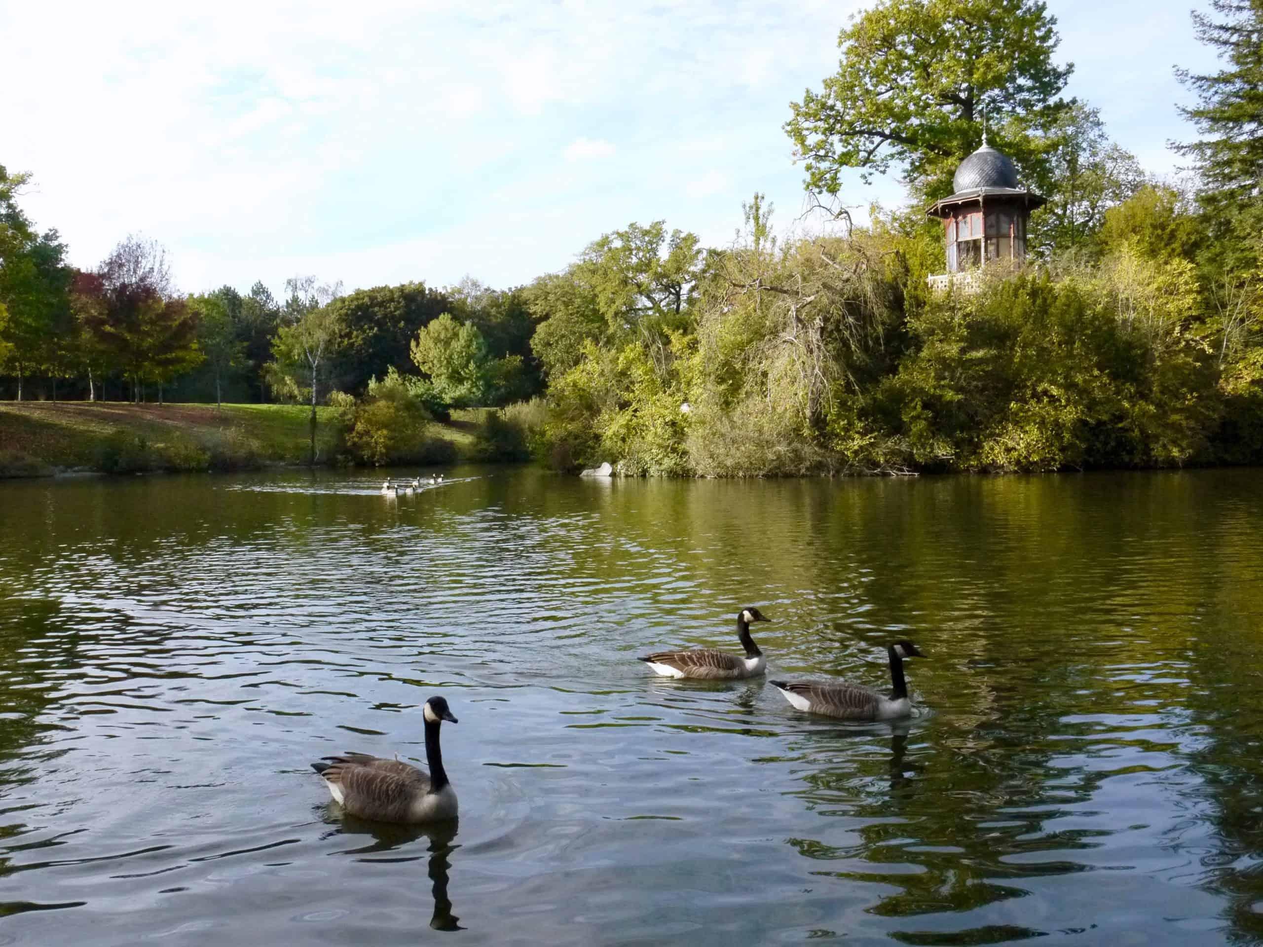 Bois du Boulogne