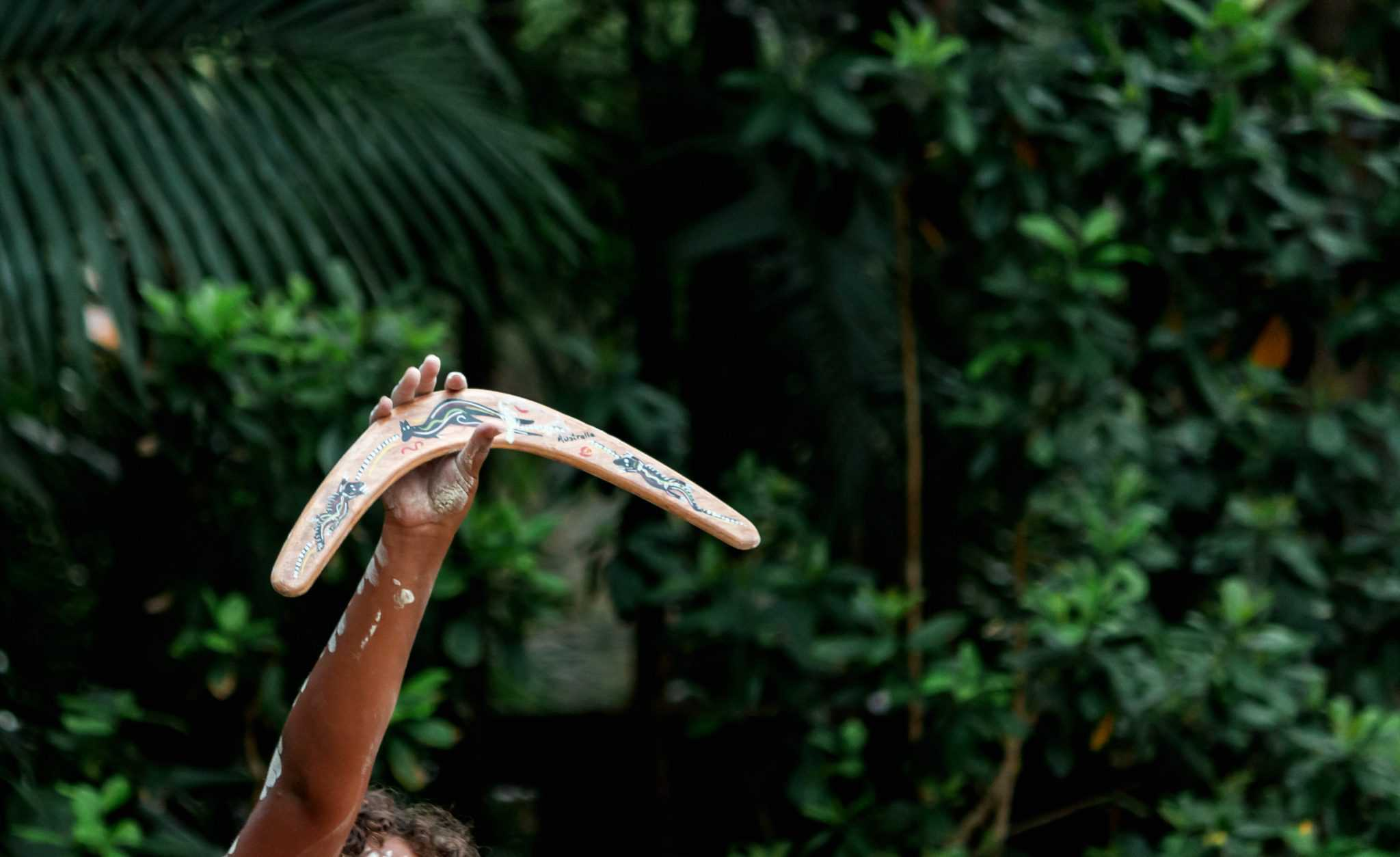 Australian Aborigine culture traditional dance with body paint and hand holding boomerang
