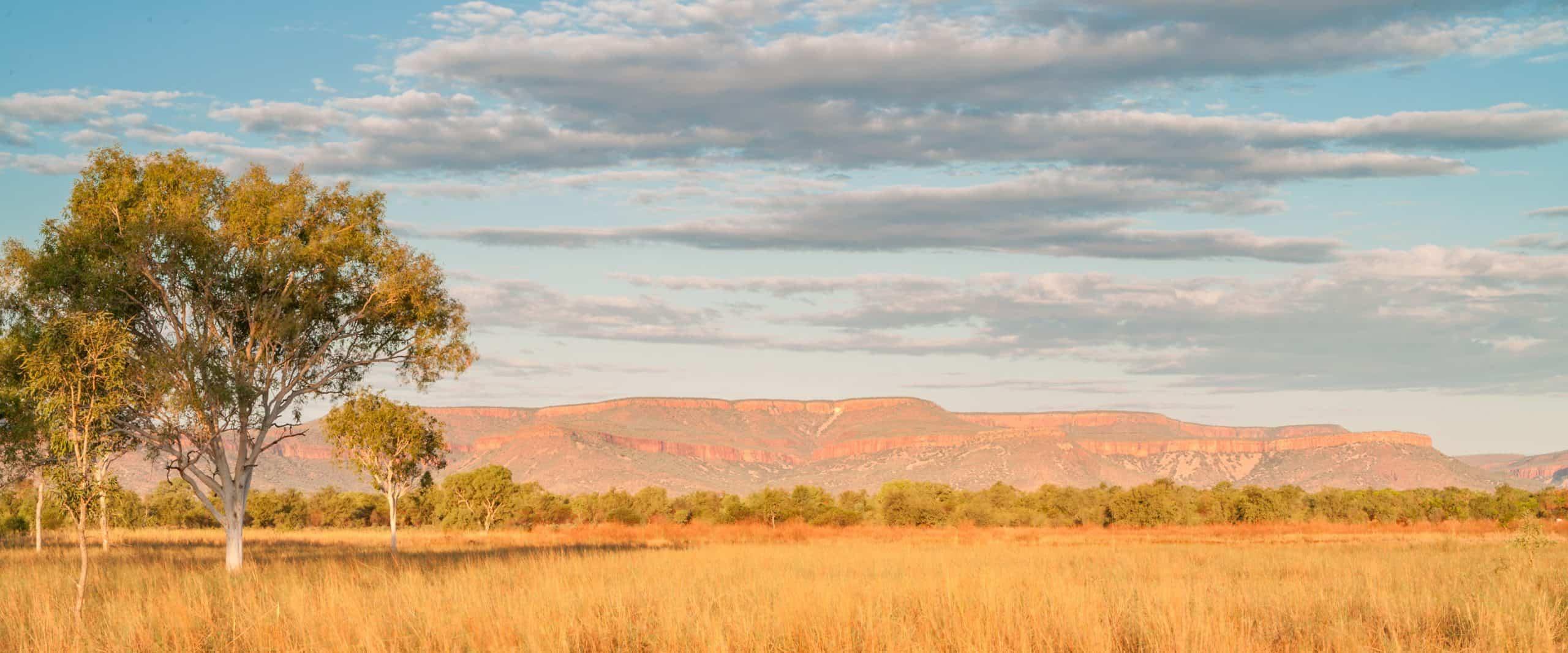 Cockburn Ranges Panoramic